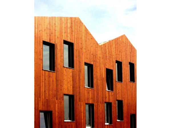 Thermowood© vertical cladding